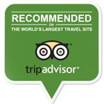 EGP Trip Advisor